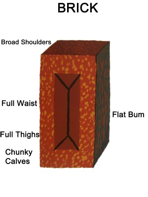 Brick Body Shape