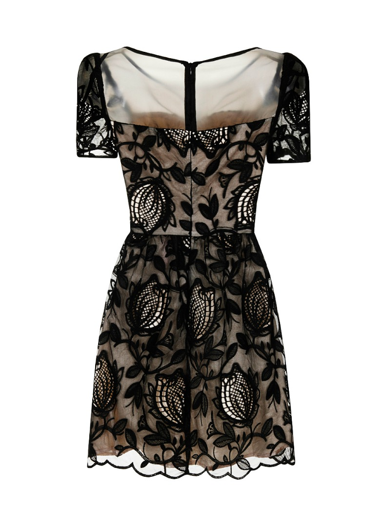 Chi Chi Sheer Lace Overlay Dress