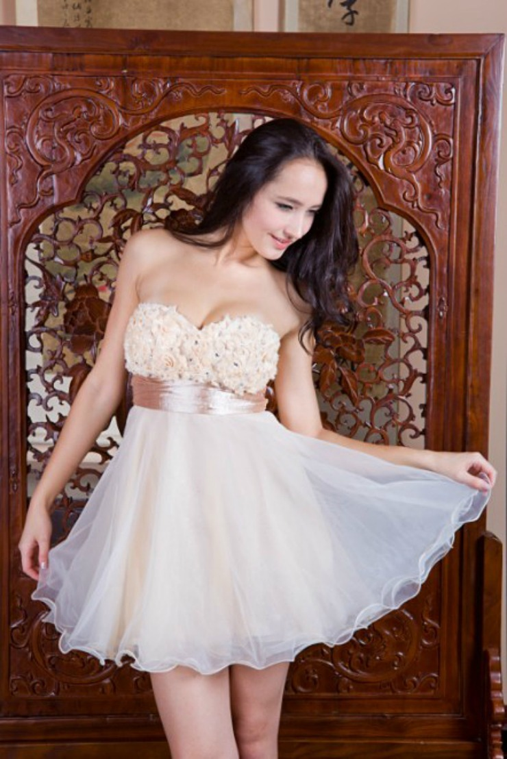Champagne Organza Prom Dress