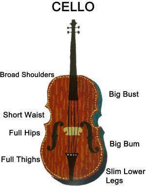 Cello Body Shape